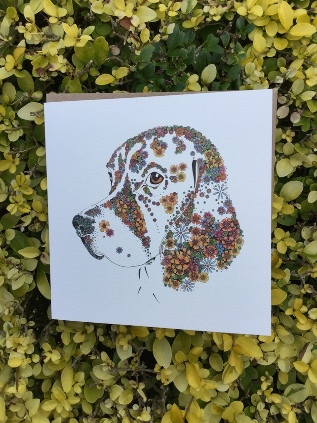 6 x Beagle Greeting card offer