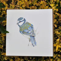 Floral Bluetit card