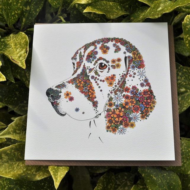 Offer 6 x Beagle Greeting card offer