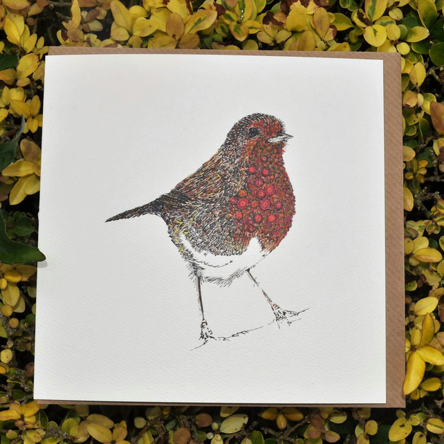 6 x Robin Greeting cards OFFER