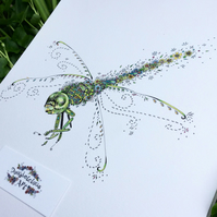 "Green Dragonfly print 12 x 15"" mounted, ready to frame"