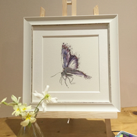 Small Framed Common Blue Butterfly