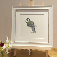 Small Framed Bluetit Illustration  offer