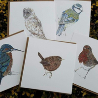 Mixed pack of British garden bird greeting cards x 5