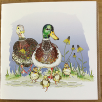 Family of Ducks and ducklings  greeting card