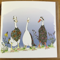3 beautiful Runner Ducks Greeting Card