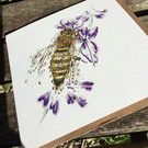 Honey Bee and Lavender Greeting Card