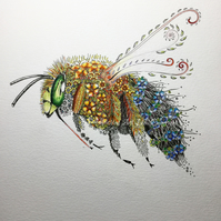 Blue banded Bee numbered and signed print