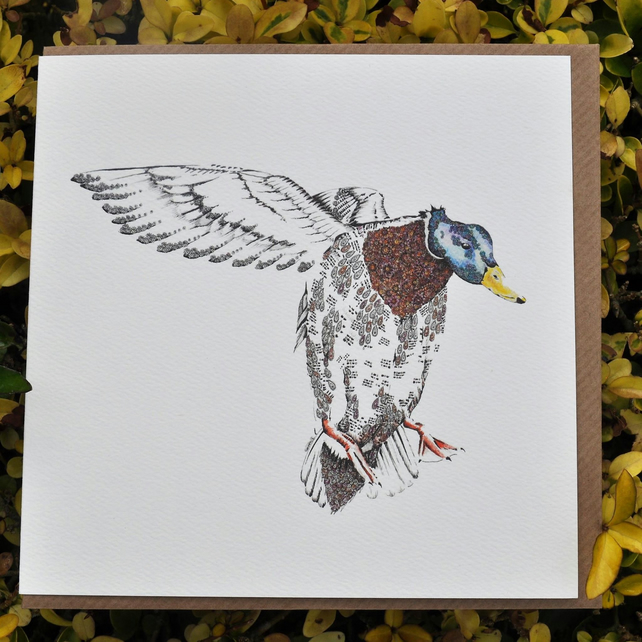 Flying a Mallard Greeting card