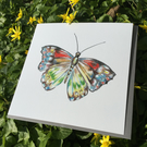 Beautiful Red admiral Butterfly Greeting Card