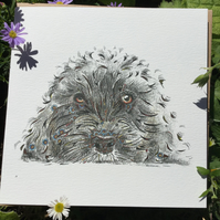 Black Cockapoo Greeting card