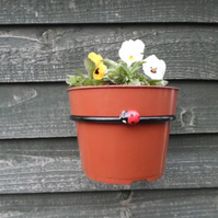 Plant Pot Ring Holder..........Wrought Iron (Forged Steel) With Ladybird Feature