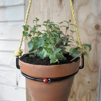 Metal Ladybug Plant Pot Ring Holder..........Wrought Iron(Forged Steel)FREE POST
