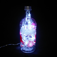 Absolut Raspberri Bottle Light