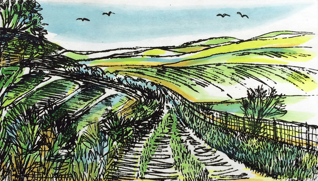 Bostal Road, South Downs'' greetings card, from a hand-coloured etching