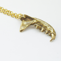 Bronze Mink Jaw,  Single, Right half of  Upper Jaw,