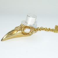 Gold Plated Bird Skull with Top Hat