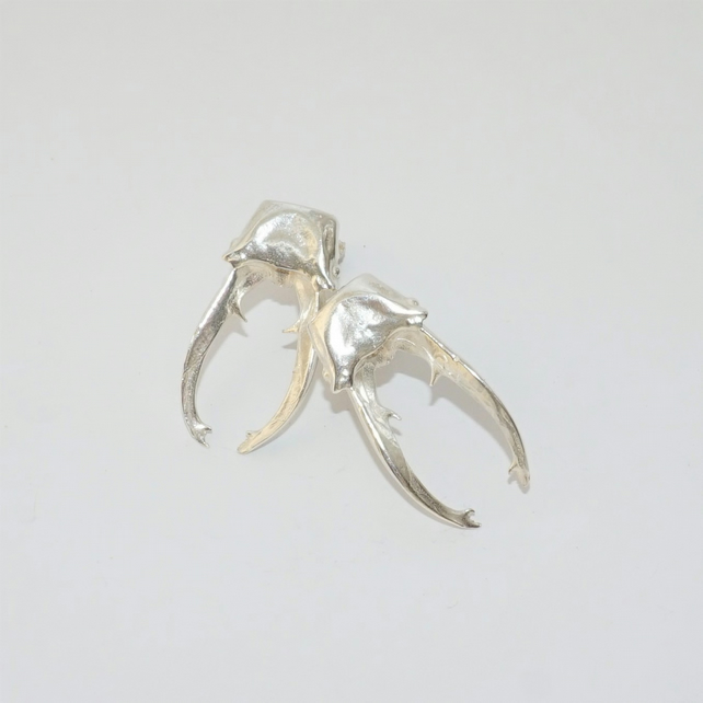 STAG BEETLE HEAD & JAW, STERLING SILVER STUD EARRINGS - UNISEX