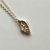 Sliced Sterling Silver Nassarius Reticulatus shell, Pendant