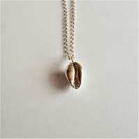 Cowrie Shell, Pendant, Sterling Silver