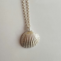 Cockle Shell Pendant, Sterling Silver