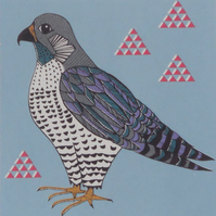Peregrine falcon 7 colour original screen print