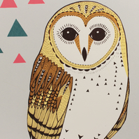 Barn Owl 6 Colour Original Screen Print