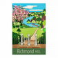 Richmond Hill - unframed