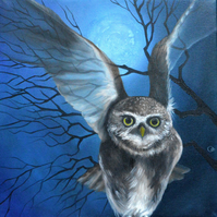"""Midnight"" Owl Fine Art Greeting Card"