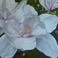 Magnolia Floral Oil Painting