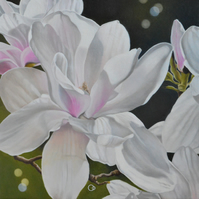 Magnolia 2 Floral Oil Painting