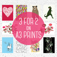 Offer! 3 for 2 on A3 Heavy Weight Prints