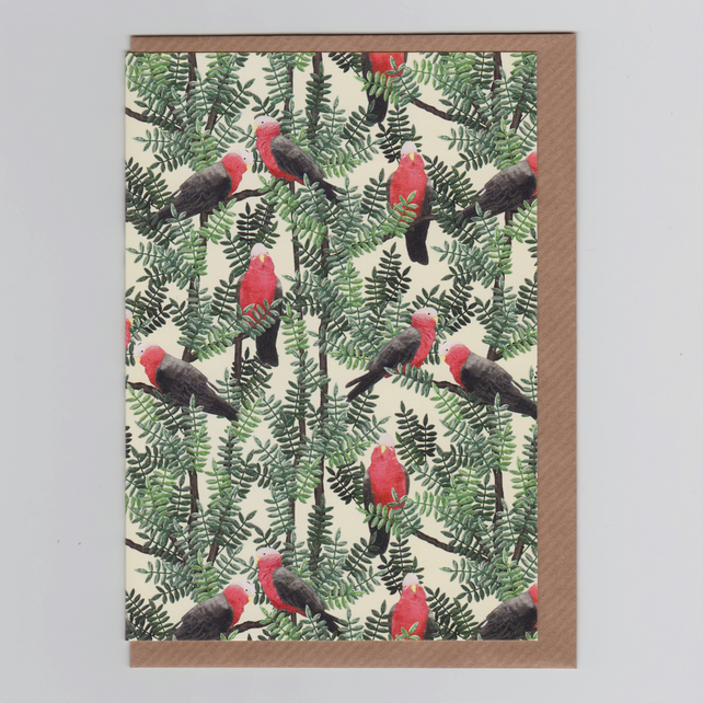 Blank Greetings Card - Galah Red