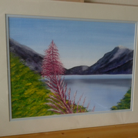 "Ennerdale pink Flower 1 - Acrylic Painting on Acrylic Board - 20"" x 16"""