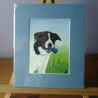 "COLLIE DOG WITH BLUE TOY - Original Acrylic Painting in mount - 12"" x 10"" approx"