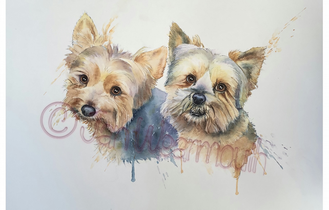 Custom double pet portrait in Watercolour, pen & ink. Dog painting. Original art