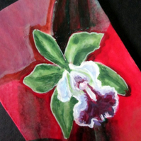 SOLD Orchid original miniature painting SPECIAL OFFER