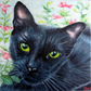8x8in Commission an original custom pet portrait painting from photo, eg cat dog