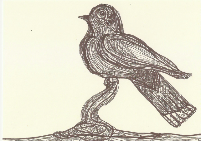 Postcard from original art work, drawing, bird sketch, bird, postcrossing
