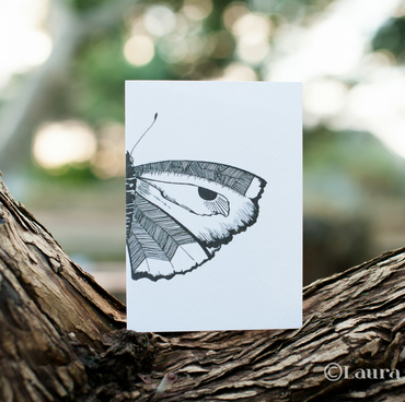Black & White Butterfly Card