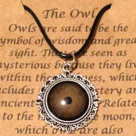 Owl eye pendant