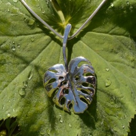 Sterling Silver Pendant: Cheese Plant Leaf