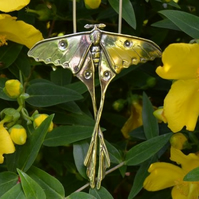 Sterling Silver Pendant: Madagascan Moon Moth