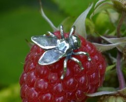 Sterling Silver Lapel Pin: Fly