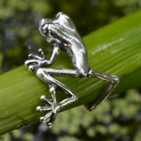 Sterling Silver Ring:Tree Frog