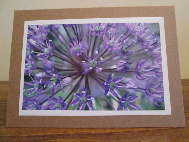 Allium Photo Greetings Card