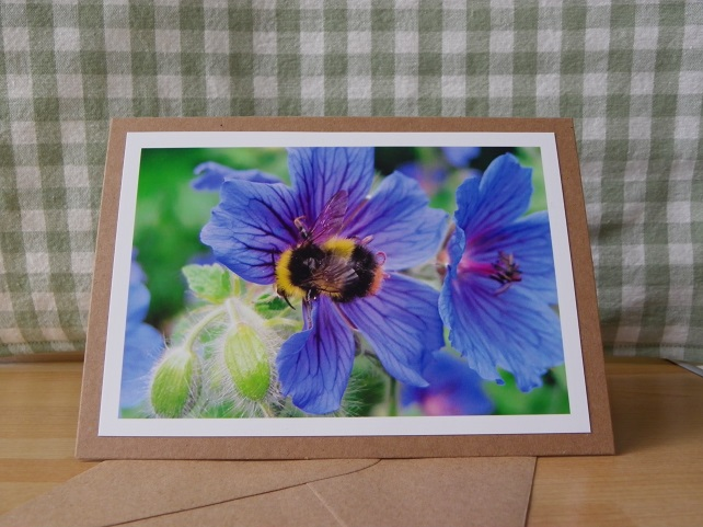 Bee on Geraniums Photo Card