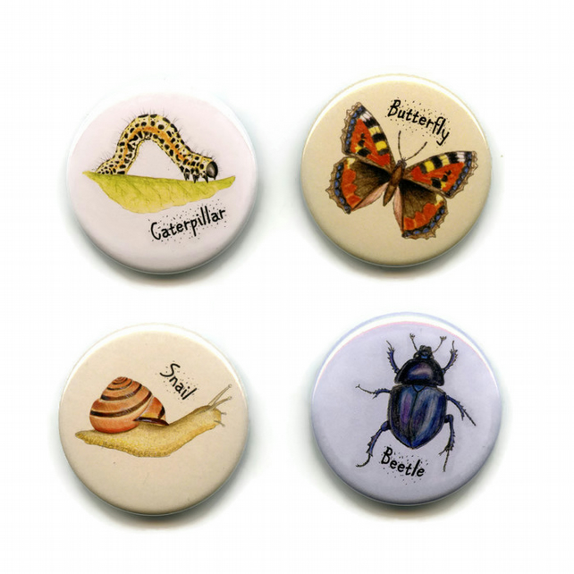 Pack of 4 Invertebrate Magnets 38mm Insect, Bugs, Minibeast, Bug Fridge Magnet 2