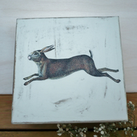 A gift box with running hare