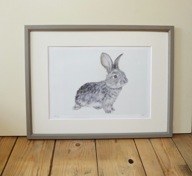 Signed Daisy Rabbit Giclee Print